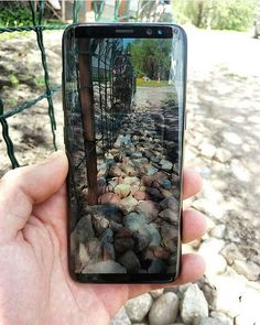 Samsung Galaxy S8 #camera Follow us (@samsungblog_) for more  . .  by@ray_fr96 . . . #samsungblog_ #samsung #galaxy #samsunggalaxy #galaxys8 #galaxys8plus #galaxys7 #galaxys7edge#samsunggalaxys8 #samsunggalaxys8plus #smartphone #phone #great