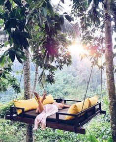tree swing in the middle of the jungle