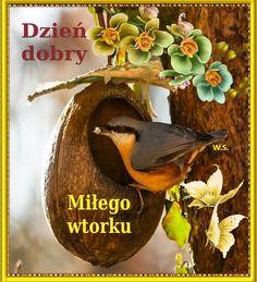 Bird, Christmas Ornaments, Holiday Decor, Outdoor Decor, Home Decor, Polish, Decoration Home, Room Decor, Birds