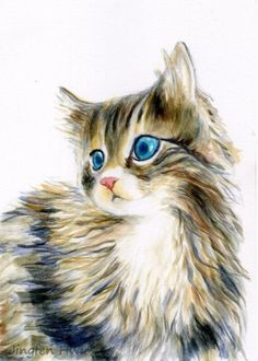 Cat Art Print Of A Furry Kitten Portrait Lover Gift Adorable