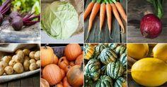 15 tipp, hogy sokáig friss maradjon a zöldség és a gyümölcs   Kuffer