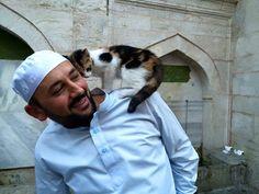 トルコ・イスタンブールのモスク、猫が凍えないように開放される
