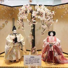 【aiko.takano】さんのInstagramをピンしています。 《今年から雛人形って立たせるのがブームなの? これはこれで美しいけど何か変な感じ〜(๑ơ ₃ ơ) #雛人形#立ってる#桜#価格は30万弱#高すぎでしょ》