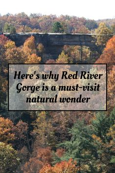 Here's why Red River Gorge is a must-visit natural wonder Kentucky Attractions, Kentucky Vacation, Kentucky Hiking, Louisville Kentucky, Travel Info, Travel Usa, Travel Tips, Travel Destinations, Vacation Trips