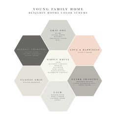 Soothing and elegant Benjamin  Moore whole house color scheme!