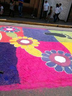 Flores de aserrin en Tegucigalpa