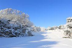 自然聖殿 芝生 - WolMyeongDong(キリスト教福音宣教会)