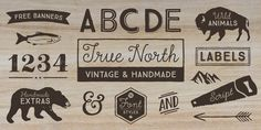 True North Font: True North is a vintage inspired typeface with 16 styles and a monoline script. True North comes with labels, extras and free banners. Great Fonts, New Fonts, Cool Fonts, Typography Love, Typography Letters, Lettering, Computer Font, Font Shop, Shop Logo