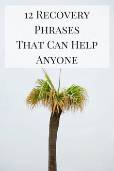 Here are some of the best recovery phrases that can help anyone - not just those who are trying to stop using drugs and alcohol. #addiction #recovery #mentalhealth #recoveryquotes #addictionquotes Mental Illness Quotes, Mental Health Quotes, Mental Health Awareness, Addiction Recovery Quotes, Getting Sober, Addiction Help, Perspective On Life, Sober Life, Inside Job