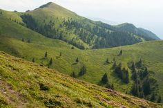 Ciucas by Fabi Nuka on 500px Vineyard, Mountains, Nature, Travel, Outdoor, Outdoors, Naturaleza, Viajes, Vine Yard