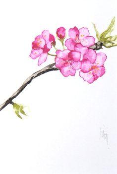 Etsy の Sakura cherry blossom by ManamiTakamatsu