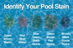 For My Pool/Backyard Entertaining To address this problem, the source of pool stains must be identif Vinyl Pool, Pool Cleaning Tips, Cleaning Hacks, Pool Plaster, Swimming Pool Maintenance, Salt Water Pool Maintenance, Pool Hacks, Pool Care, Dining Room