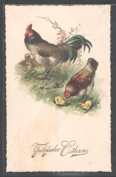 Vintage postcard Vintage Labels, Vintage Ephemera, Vintage Postcards, Vintage Images, Vintage Easter, Vintage Holiday, Resale Store, Chicken Art, Chickens And Roosters