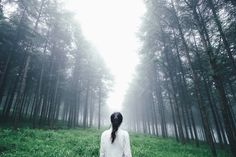 Chasing fog by Takashi Yasui Editors' Choice) Tumblr Stuff, Art Photography, Beautiful Places, Outdoor Decor, Facebook, Portfolio, Fujifilm, Travel Photos, Spiritism