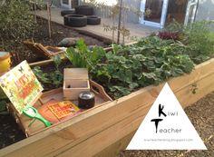 Kiwi Teacher: A tour of the outdoor environment