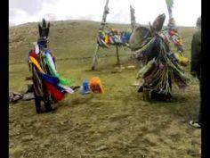 mongolian shaman Ølzii hutag 28062009001