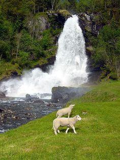 Steinsdalsfossen waterfall, Norheimsund, Hardangerfjord, Norway.