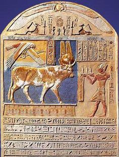 A stela of Ptolemy V showing an offering scene to a sacred bull