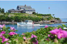 50 Best Biddeford Pool Bliss Images Biddeford Biddeford Pool Maine Pool
