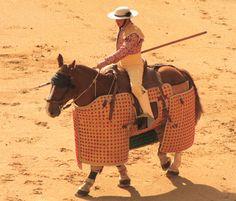 Mounted picador.