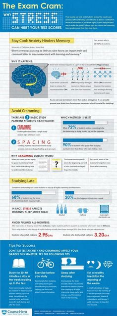 Why stress can hurt your test scores   Cramming for your Exam [infographic]   Daily Infographic