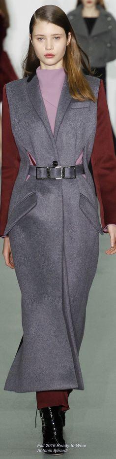 Fall 2016 Ready-to-Wear Antonio Berardi