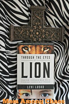 Through the Eyes of a Lion, Levi Lusko, lion, God, book review, #FCBlogger, family christian, soul, self help, #fcblogger