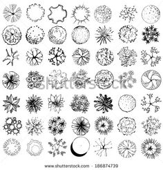 A set of treetop symbols, for architectural or landscape design, black and white - stock vector
