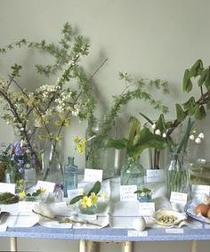 Nature tables need the following: Jars, Pens or pencils, Place cards for identifying items, Guidebooks, Small bowls and plates for display