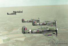 Typhoon 56 Sqn RAF WWII