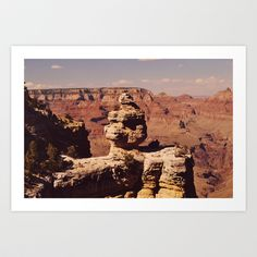 Duck On A Rock formation, Grand Canyon  Art Print - $20.00