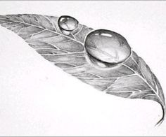 Color Pencil Drawing Tutorial Easy Art Pencil Drawing: How to Draw Dew Drop on Leaf - Easy Pencil Drawings, 3d Pencil Sketches, Easy 3d Drawing, 3d Drawing Tutorial, Pencil Drawings For Beginners, Easy Drawings Sketches, 3d Art Drawing, Pencil Drawing Tutorials, Leaf Drawing