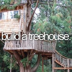 Even if I don't have kids, I am building a treehouse because it was something I always wanted.