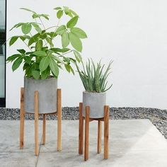 West Elm Inspired DIY Plant Stands - Hansi - West Elm Inspired DIY Plant Stands Have y'all seen these modern/mid century plant stands? West Elm has inspired millions and I'm here to grind out an easy, fool proof tutorial that anyone can do.