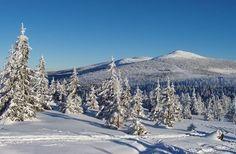 Czech Republic - Winter in the Krkonoše Mountains Central Europe, Czech Republic, Snowboarding, Mount Everest, Hiking, Mountains, Park, Nature, Travel
