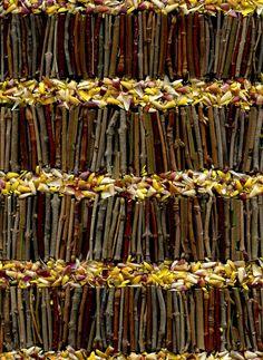 55832.01 twigs, Bracteantha | Flickr - Photo Sharing!