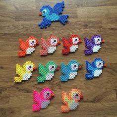 Rainbow birds hama beads by mediegiraf