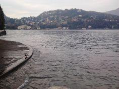 Davanti il Lago di Como, CO