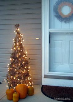 Make a grapevine tree by wiring grapevine to upside down tomato cage and adding lights.