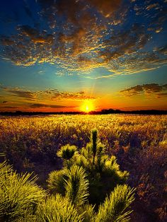 Here With Me Photograph by Phil Koch