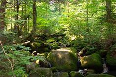 mountainsadirondacks - Bing images