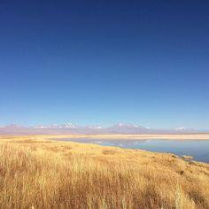 Sencillamente precioso!! Esta es la Laguna Cejar en Santiago de Atacama con @denomades