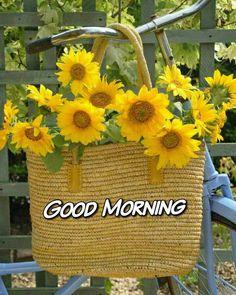 Good Morning Beautiful Good Morning Flowers Good Morning Roses Beautiful Morning Messages