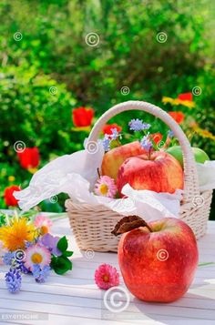 Red apples in basket and flowers in the garden Red Apple, Fresh Fruit, Apples, Strawberry, Basket, Cooking, Garden, Flowers, Kitchen
