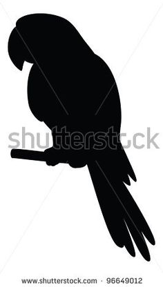 Clever speaking parrot sits on a wooden pole, black silhouette on white background. Vector by alexcoolok, via ShutterStock