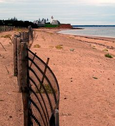 Prince Edward Island, Canada. All the soil in PEI and the coast of New Brunswick is red like this. It is the iron in the sand and soil that makes it red!