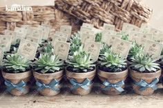 www.kamalion.com.mx - Recuerdos / Giveaways / Favors / Detalles Personalizados / Vintage / Bautizo / It's a boy/ Azul / Blue / Mini Macetas / Plant / Suculenta / Flower pot.