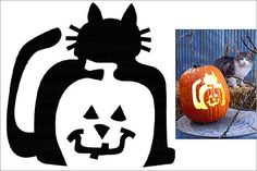 28 Halloween Cat Pumpkin Stencils for a spooky Halloween | Pictures of Cats - Band of Cats