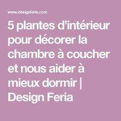 5 plantes d'intérieur pour décorer la chambre à coucher et nous aider à mieux dormir | Design Feria
