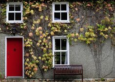 House of Leaves by Ian Moran on House Of Leaves, Life Touch, Irish Roots, Connemara, Irish Eyes, Ireland Travel, Doorway, My Happy Place, Gate